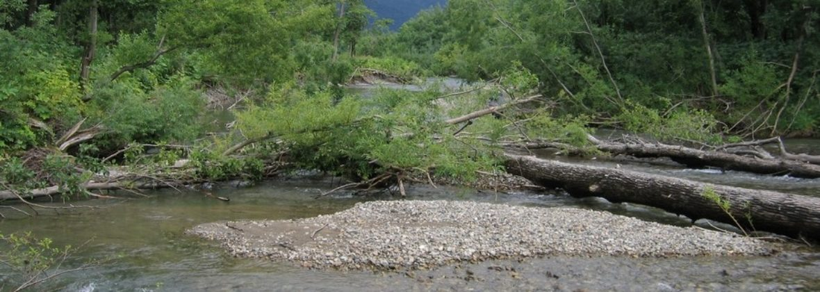 Паратунские термальные источники и нерест рыбы на реке Паратунка