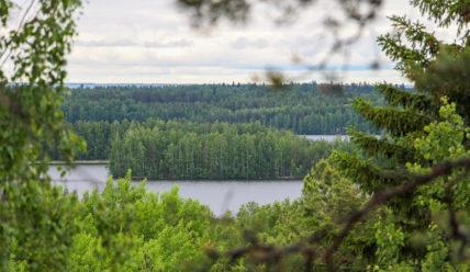 Наши путешествия по Онежскому озеру: секреты и хитрости советских туристов