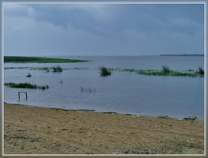 устье Волхова, южный берег Ладожского озера