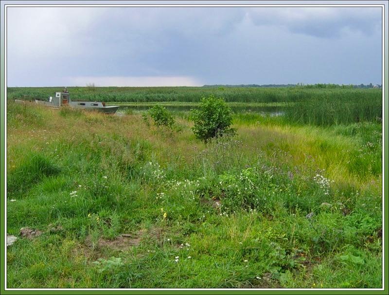 Приладожье, южный берег Ладожского озера