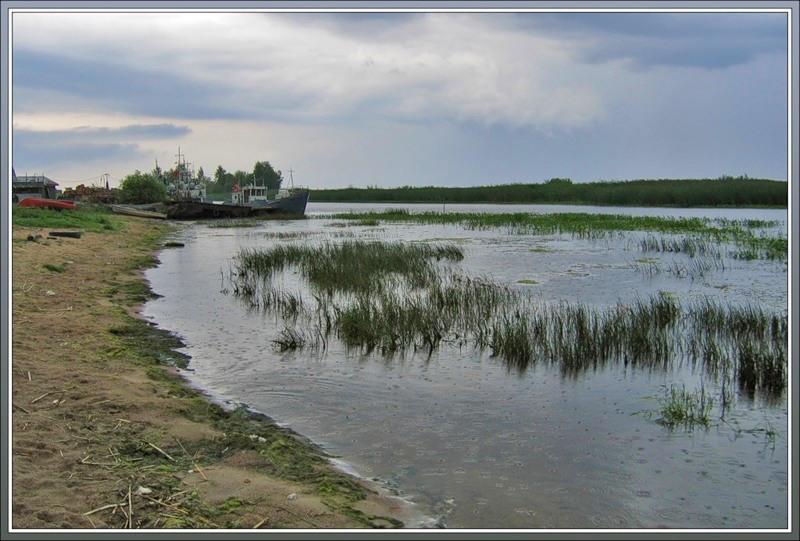 южный берег Ладожского озера