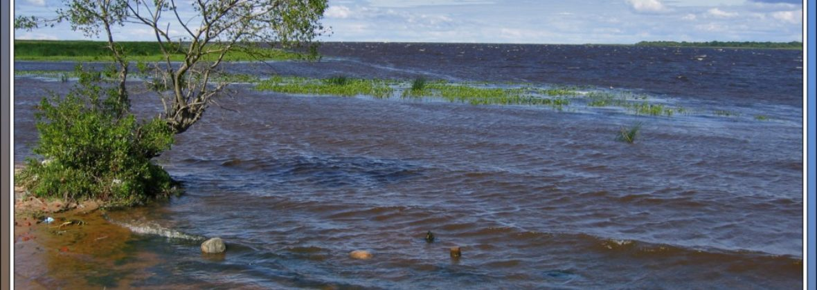 Поездка на Ладожское озеро, к устью Волхова