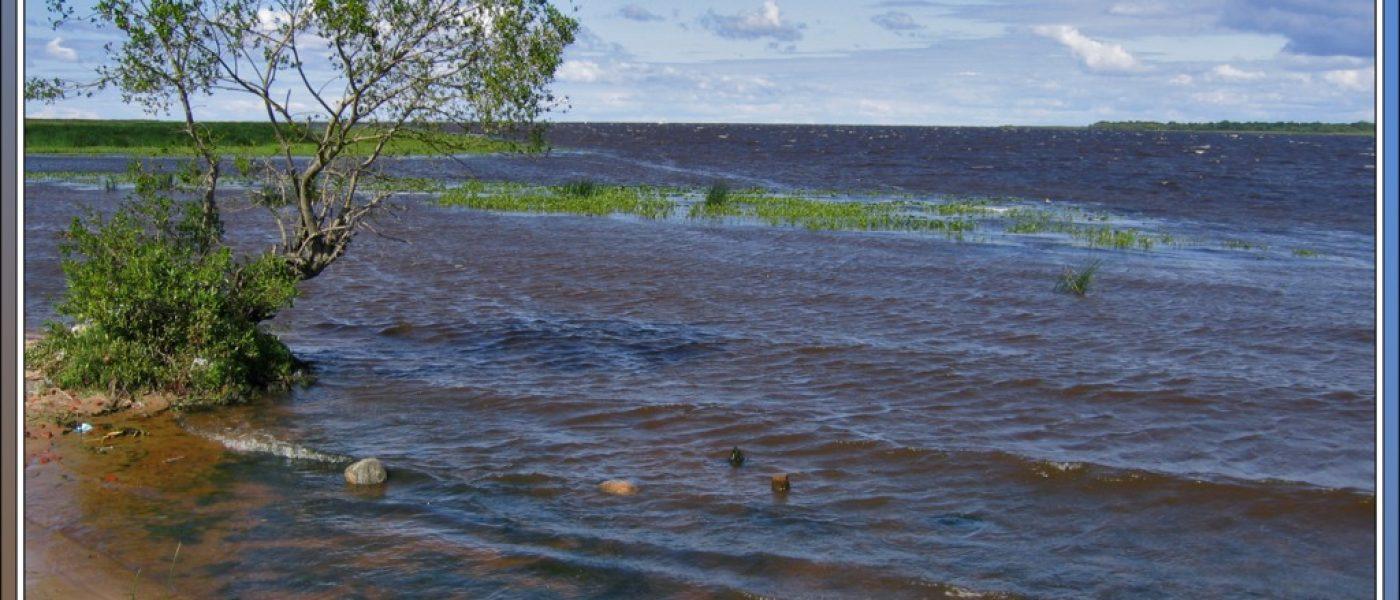 У самого синего моря: там, где Волхов впадает в Ладогу