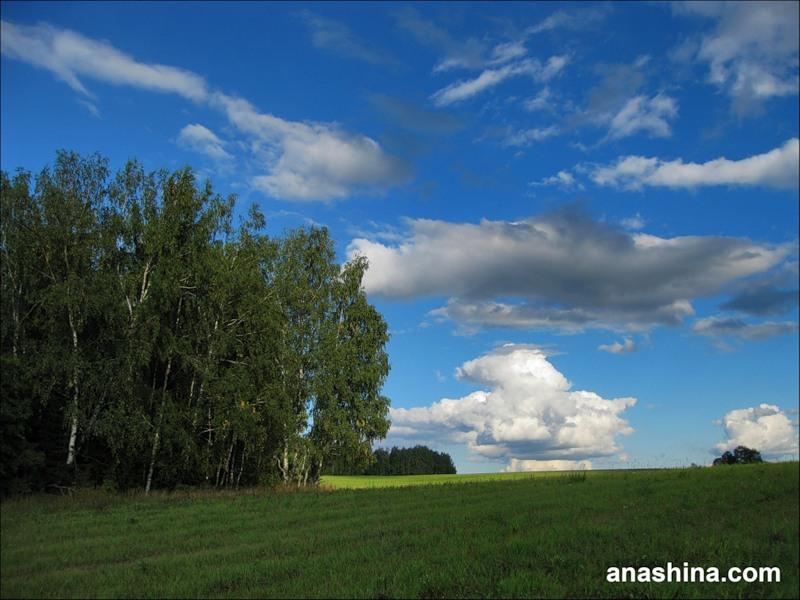 Облака над полем, сентябрь в Подмосковье