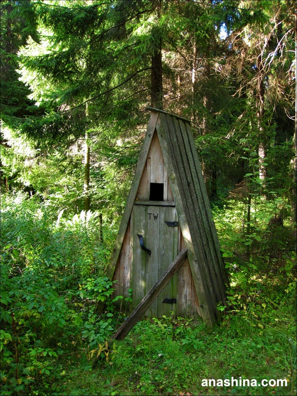 Творение неизвестного архитектора в лесу