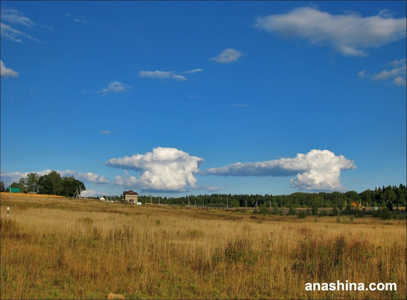 Облака, сентябрь в Подмосковье