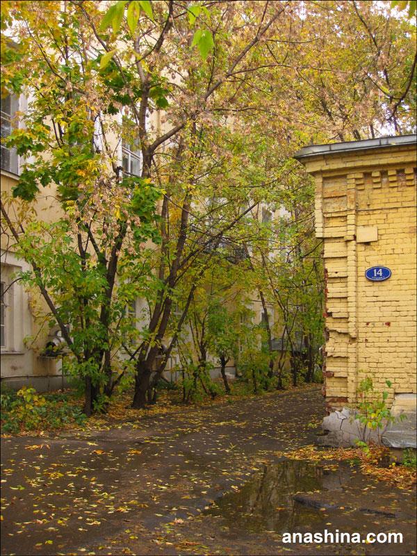 У здания Института философии РАН (бывшая усадьба Голицыных)