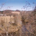 Река Серёжа в Тверской области