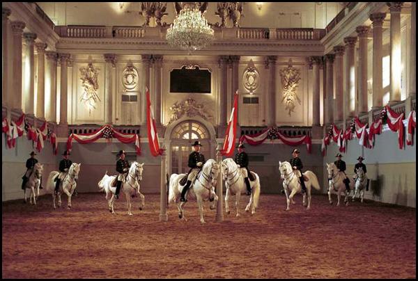 Испанская школа верховой езды в Вене. Балет белых жеребцов