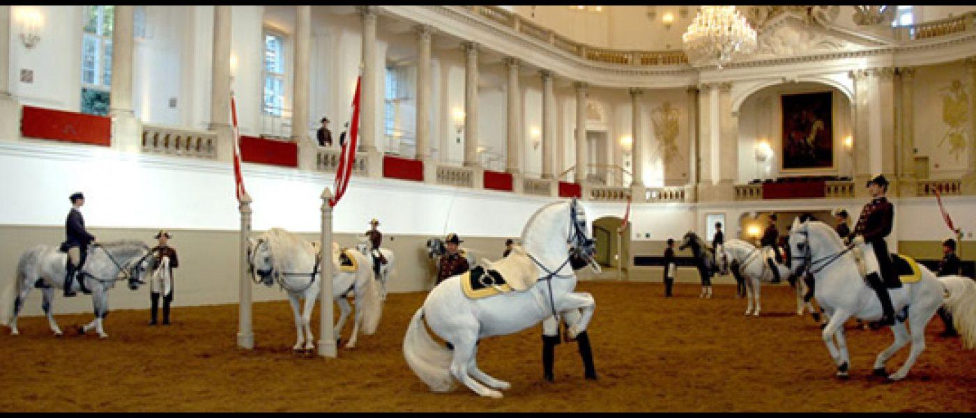 Испанская школа верховой езды в Вене: гармония всадника и лошади