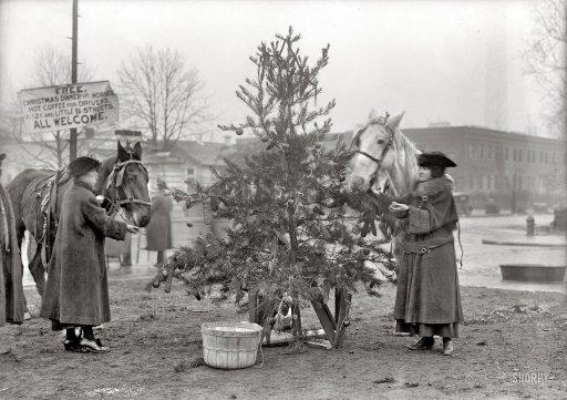 Рождественский обед для лошадей
