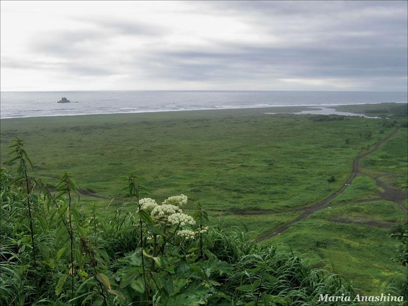 Тихий океан, Халактырский пляж, Халактырка