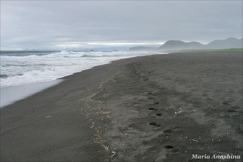 Камчатка, Тихий океан, Халактырский пляж