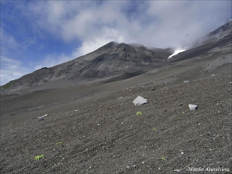 Склон Козелького вулкана, Камчатка