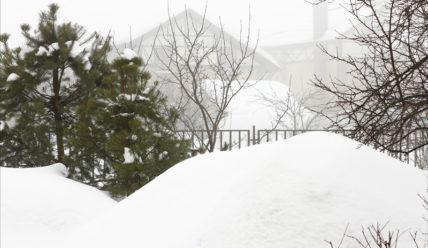 После снегопада — фотографии