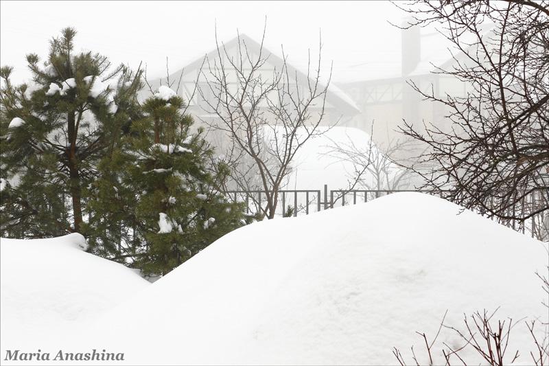 Туман и сугробы