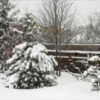 Самый сильный снегопад за последние 150 лет