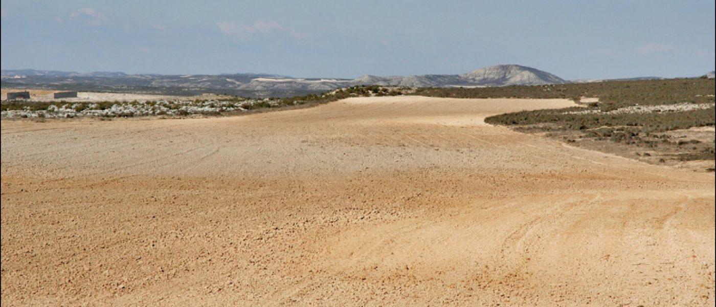 Сарагоса — место встречи Запада и Востока