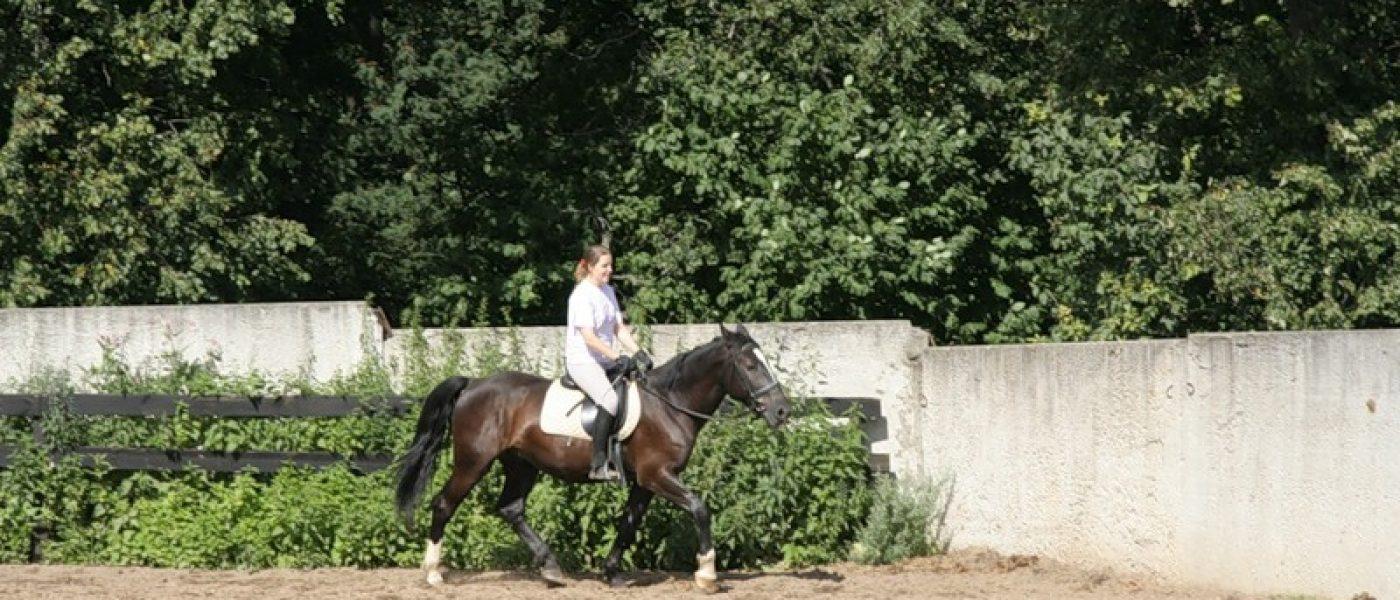 Мой конь Кубик