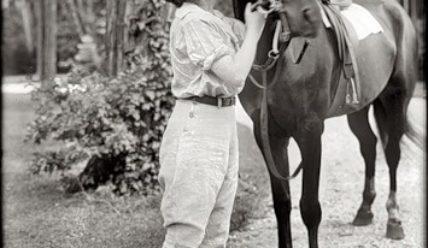 Лошади на старых фотографиях