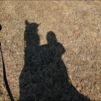 Апрельская прогулка