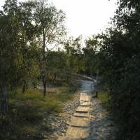 Национальный парк «Куршская коса»: Высота Эфа, дюна Ореховая, поселок Морское