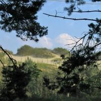 Национальный парк «Куршская коса»: орнитологическая станция «Фрингилла»