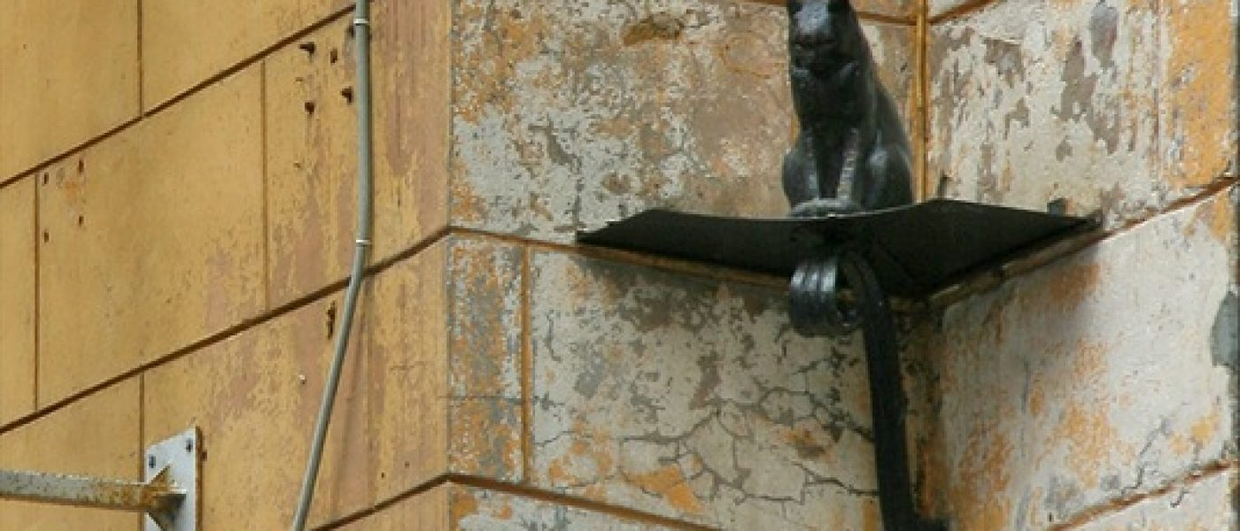Кошки блокадного Ленинграда