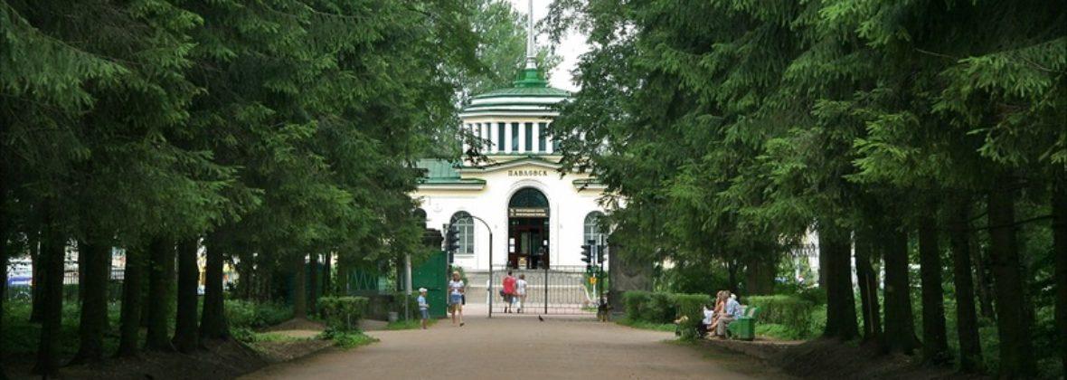 Павловский парк: район Большая звезда