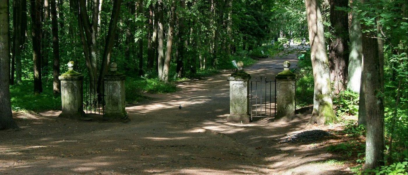 Павловский парк: районы Старая Сильвия и Новая Сильвия