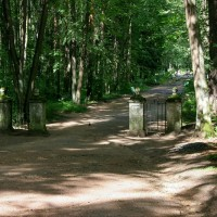 Павловский парк: пейзажные районы Старая Сильвия и Новая Сильвия