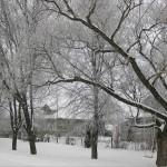 Белая деревня и белый лес — канун Старого Нового года