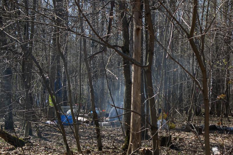 Пикник в Тимирязевском лесопарке