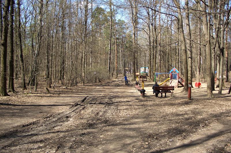 Детская площадка в Тимирязевском парке