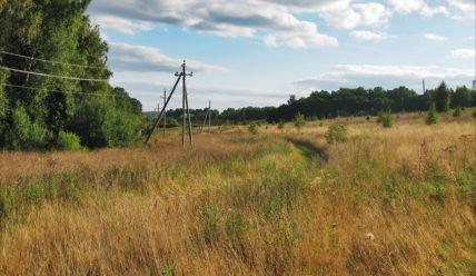Прогулки в поля в конце августа: день второй