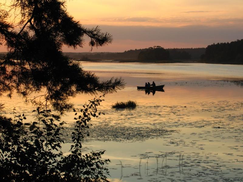 Видогощинский залив, Волга, Иваньковское водохранилище