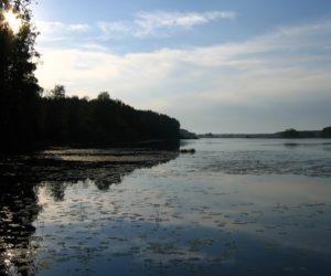 Видогощинский залив, Волга