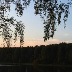 Вечерняя тишина