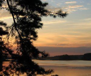 Вечер в Видогощинском заливе