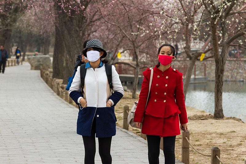 Пекинцы