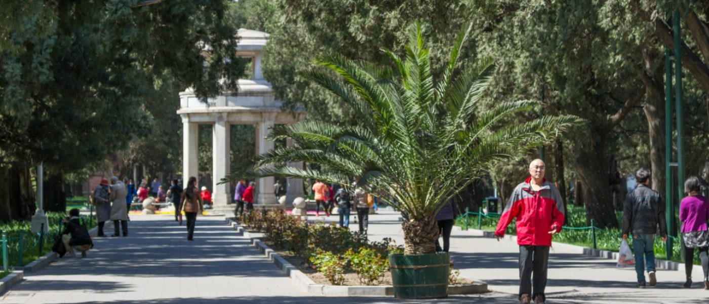 Пекинский парк Чжуншань: музей Сунь Ятсена, алтарь Земли и Злаков и выставка цветов