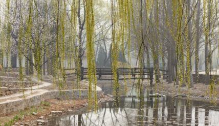 Опасная красота пекинского смога