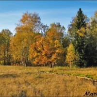 Осень в полях — немного ностальгии по прошлому
