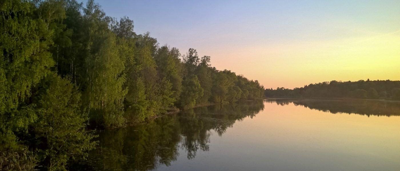 Деревня Пёсье и река Лубянка: красивый уголок в Новой Москве