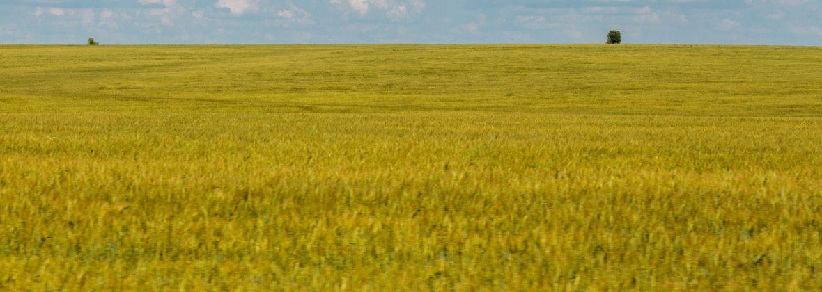 Дорога из Рязани в Тулу — по границе Леса и Степи