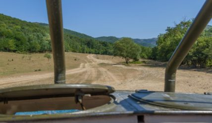 Отдых в Геленджике: поездка на БТР в горы