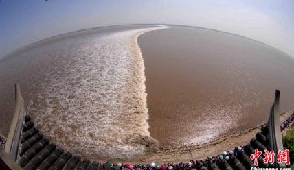 Приливы на реке Цяньтан