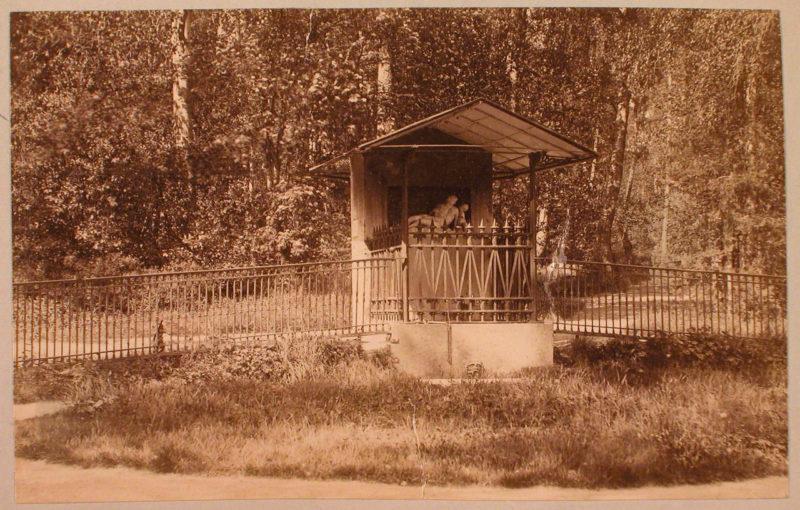 """Павильон """"Нарцисс"""", парк Монрепо"""