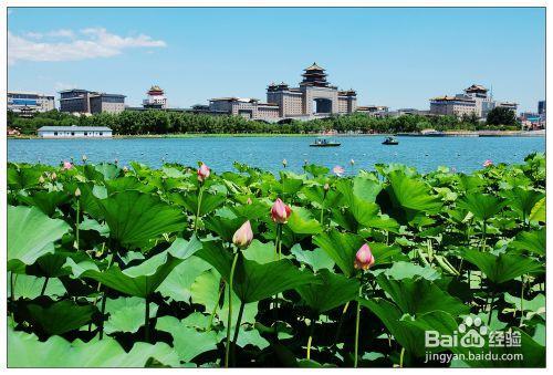 Парк Ляньхуачи, Пекин