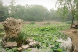Парк Лунтань сиху, Достопримечательности Пекина